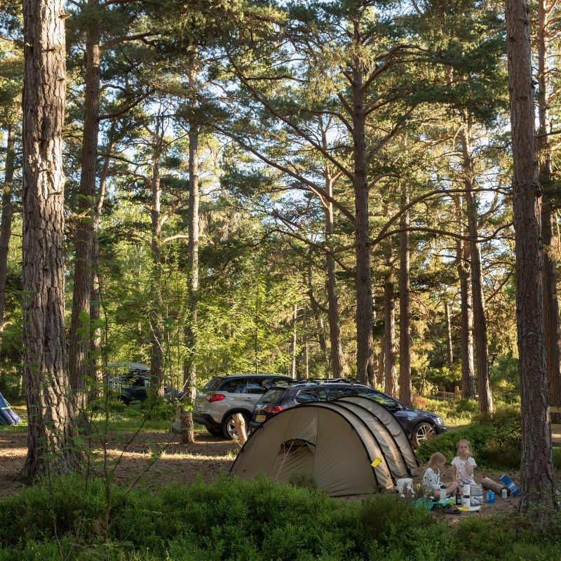Camping, Thiemurchus, Cairngorms national park.